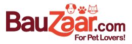 Con Bauzaar.com accumuli punti PAYBACK!